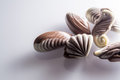 Chocolate candy in the form of sea shells on white table Royalty Free Stock Photo
