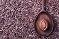 Chocolate candy in a wooden spoon on a crushed raw cocoa beans, nibs background. Copy space Top view