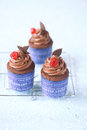 Chocolate cherry cupcakes Foto de archivo