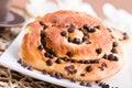 Chocolate chip brioche bun. Stock Photography