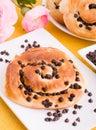 Chocolate chip brioche buns. Stock Photography