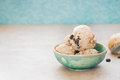 Chocolate Chip Cookie  Ice Cream Royalty Free Stock Photo