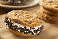 Chocolate chip cookie ice cream sandiwch Foto de Stock
