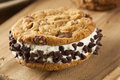 Chocolate chip cookie ice cream sandiwch Imagens de Stock