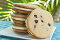 Chocolate Chip Cookie Ice Cream Sandwich Royalty Free Stock Photo