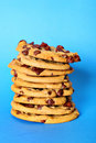 Chocolate chip cookie stack on blue vertical Royalty Free Stock Images