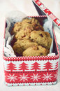 Chocolate chip cookies in a cookie tin Royalty Free Stock Photo