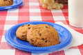 Chocolate chip cookies on a picnic table Royalty Free Stock Photography
