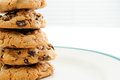 Chocolate chip and walnut cookies oven fresh home made Stock Photography