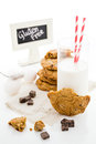 Chocolate chunk cookies Royalty Free Stock Photo
