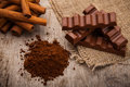 Chocolate cocoa powder and cinnamon spice Stock Images