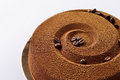 Chocolate coffee cake with grains of coffee on a gold substrate Stock Photography