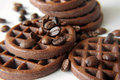 Chocolate cookies with cocoa - beans Stock Image