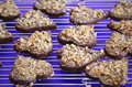 Chocolate cookies with nuts shaped as hearts Royalty Free Stock Photo