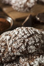 Chocolate crinkle cookies with powdered sugar homemade Royalty Free Stock Photography