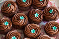 Chocolate cup cakes set food Royalty Free Stock Images
