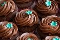 Chocolate cup cakes set food Stock Photos