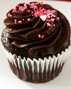 Chocolate cupcake a with frosting and pink and red sprinkles Royalty Free Stock Image
