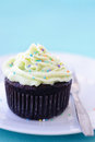 Chocolate cupcake with hundreds and thousands mini cake frosted icing sprinkled colourful Royalty Free Stock Photography