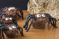 Chocolate cupcake spiders on a wooden surface with a bale of straw in the background Stock Image