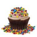 Chocolate Cupcake with Sprinkles Royalty Free Stock Photo
