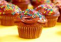 Chocolate cupcakes Royalty Free Stock Photo