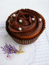 Chocolate cupcakes with chocolate cream Royalty Free Stock Photo