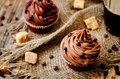 Chocolate cupcakes with chocolate frosting and chocolate chips the toning selective focus Royalty Free Stock Photography