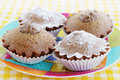 Chocolate cupcakes with cream and icing sugar Royalty Free Stock Photo