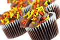 Chocolate cupcakes decorated for autumn. Royalty Free Stock Images
