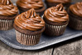 Chocolate cupcakes with frosting a swirl of on a metal tray on a wooden table Royalty Free Stock Images