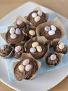 Chocolate cupcakes with mini easter eggs arrangement of decorated Royalty Free Stock Images