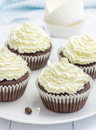 Chocolate cupcakes with ricotta cheese frosting on the white plate Royalty Free Stock Images