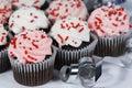 Chocolate Cupcakes Sprinkles Royalty Free Stock Photo