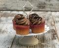 Chocolate cupcakes Royalty Free Stock Photo