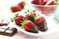 Chocolate dipped strawberries Stock Photography