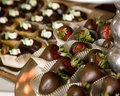 Chocolate dipped strawberries Stock Photos