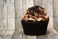 Chocolate doble chip cup cake Foto de archivo