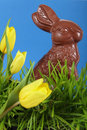 Chocolate Easter bunny Stock Photography