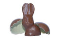 Chocolate easter bunny with egg Stock Photo