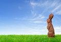 Chocolate easter bunny green meadow over bright spring sky Royalty Free Stock Image