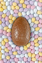 Chocolate easter egg surrounded a by candy covered mini eggs Stock Image