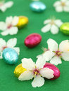 Chocolate Easter eggs with spring flowers Stock Image