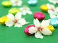 Chocolate Easter eggs with spring flowers Stock Images