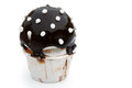 Chocolate flavor cup cake isolated with clipping path Royalty Free Stock Images