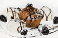Chocolate fondant with icecream on the plate Royalty Free Stock Photo