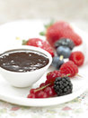 Chocolate Fondue Royalty Free Stock Images