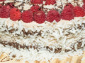 Chocolate framboise layer cake decorated with fresh raspberries Stock Image