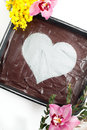 Chocolate Heart Cheesecake Stock Images