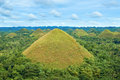 The chocolate hills of bohol island phillipines are unique geological formation at philippines they are covered in green grass Stock Images